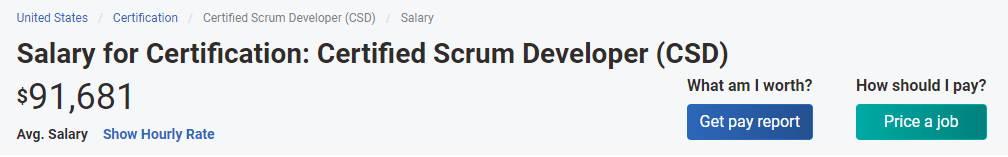 Scrum developers