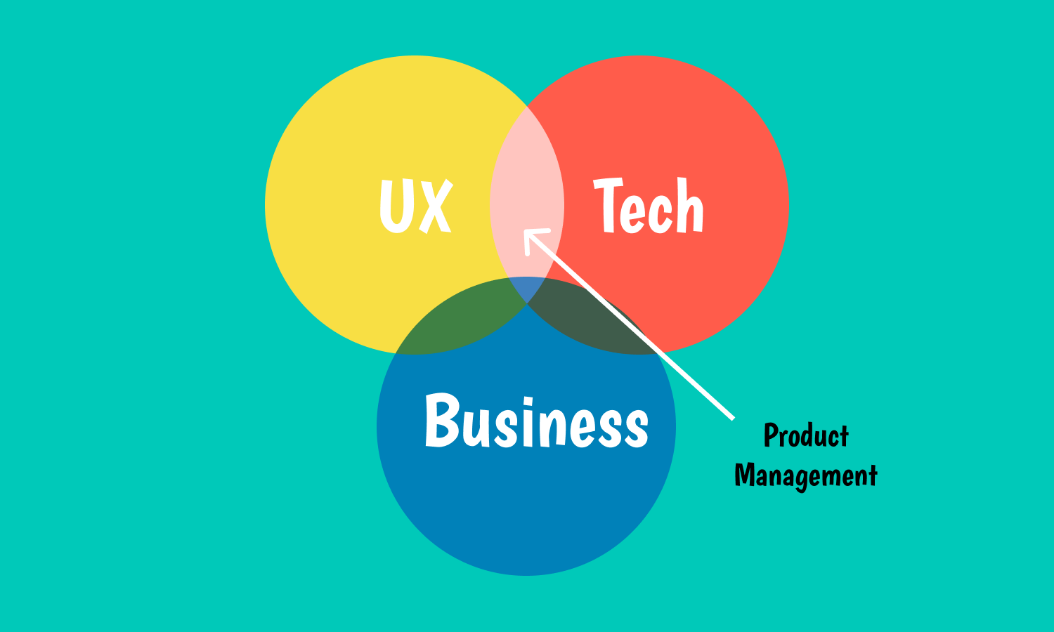 What are product managers?